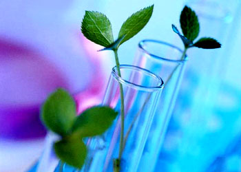 Progress in Plant Sciences and Biotechnology IP